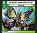 Broadsword Butterfly