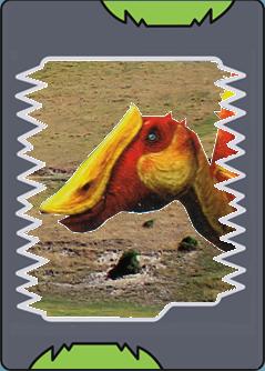 Pictures Of Daspletosaurus Dinosaur King Www Kidskunst Info