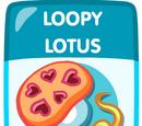 Loopy Lotus