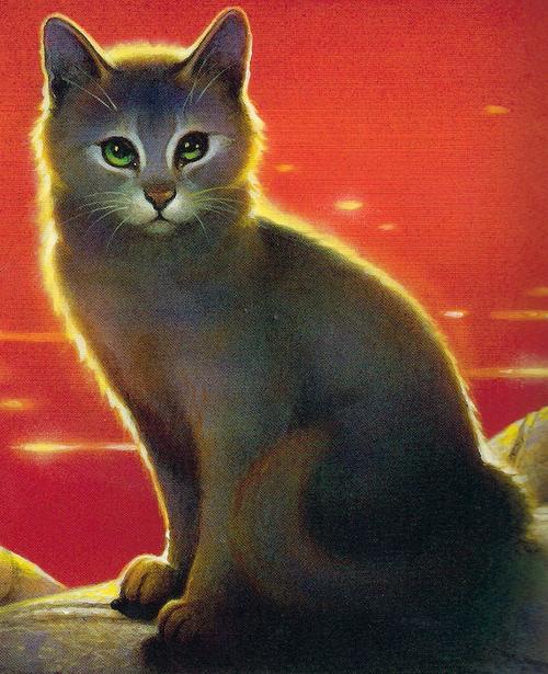 Warriors A Vision Of Shadows Raging Storm: Fluss (Anführer)