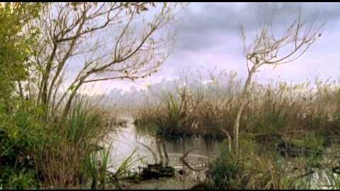 The Future is Wild Waterland 100M, E06