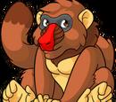 Brown Pet Images