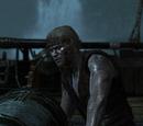 Воспоминания Assassin's Creed IV: Black Flag