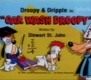 Car Wash Droopy