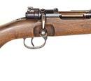 Sturmkampfgewehr