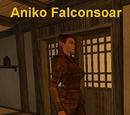 Aniko Falconsoar
