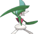 Mr. Psychic's Gallade