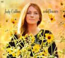 Wildflowers (Judy Collins)