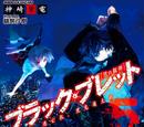 Black Bullet: The Fugitive, Satomi Rentaro