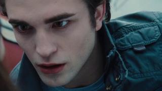 TWILIGHT SAGA BREAKING DAWN-PART 1 THE BEGINNING OF THE END (SNEAK PEEK), THE