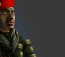 Commandos Para