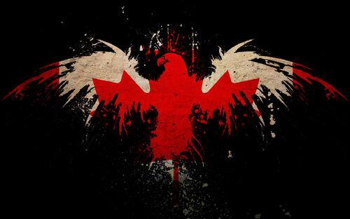 Leaf Images hd Image Leaf Eagles Canada
