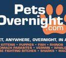 Pets Overnight