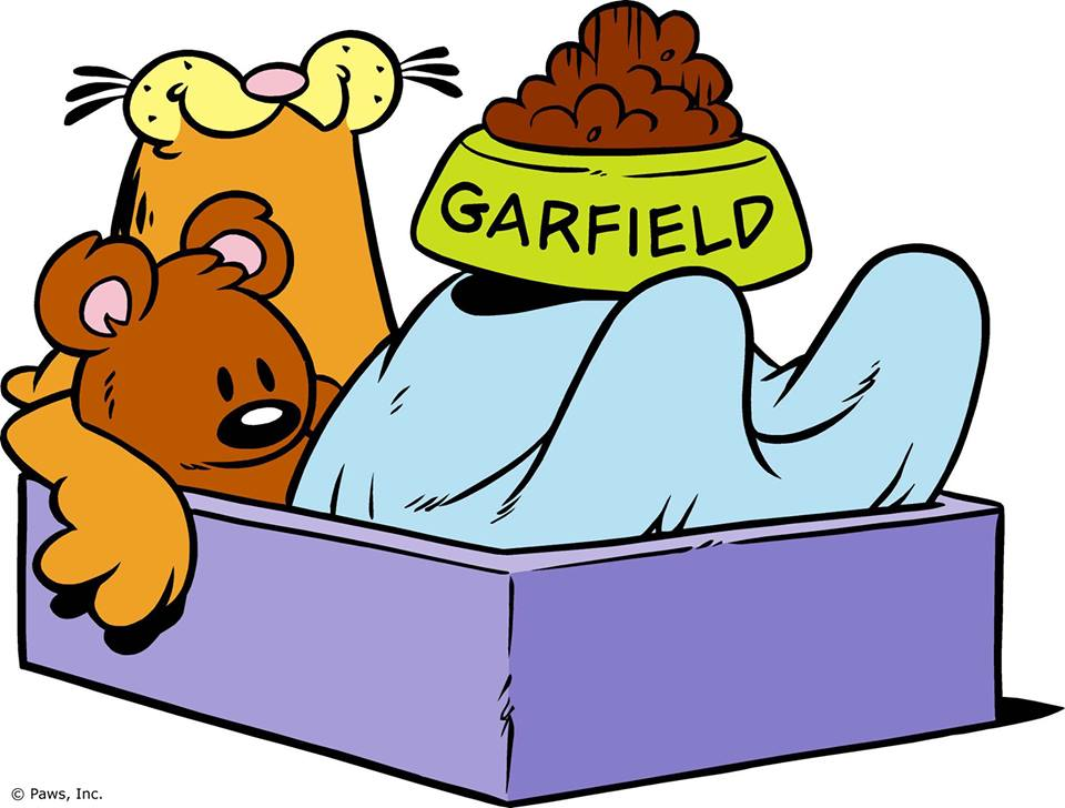 http://img3.wikia.nocookie.net/__cb20140215141915/garfield/images/6/61/Garfield_sleeping_2.jpg