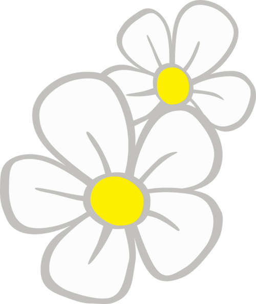 500px-Daisy_CM.png