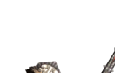 MH4-Sword and Shield Render 047.png