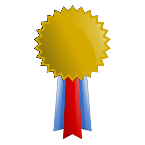 480px-Gold_Medal_2_Vector_Clipart.png