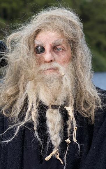 Vikings Odin