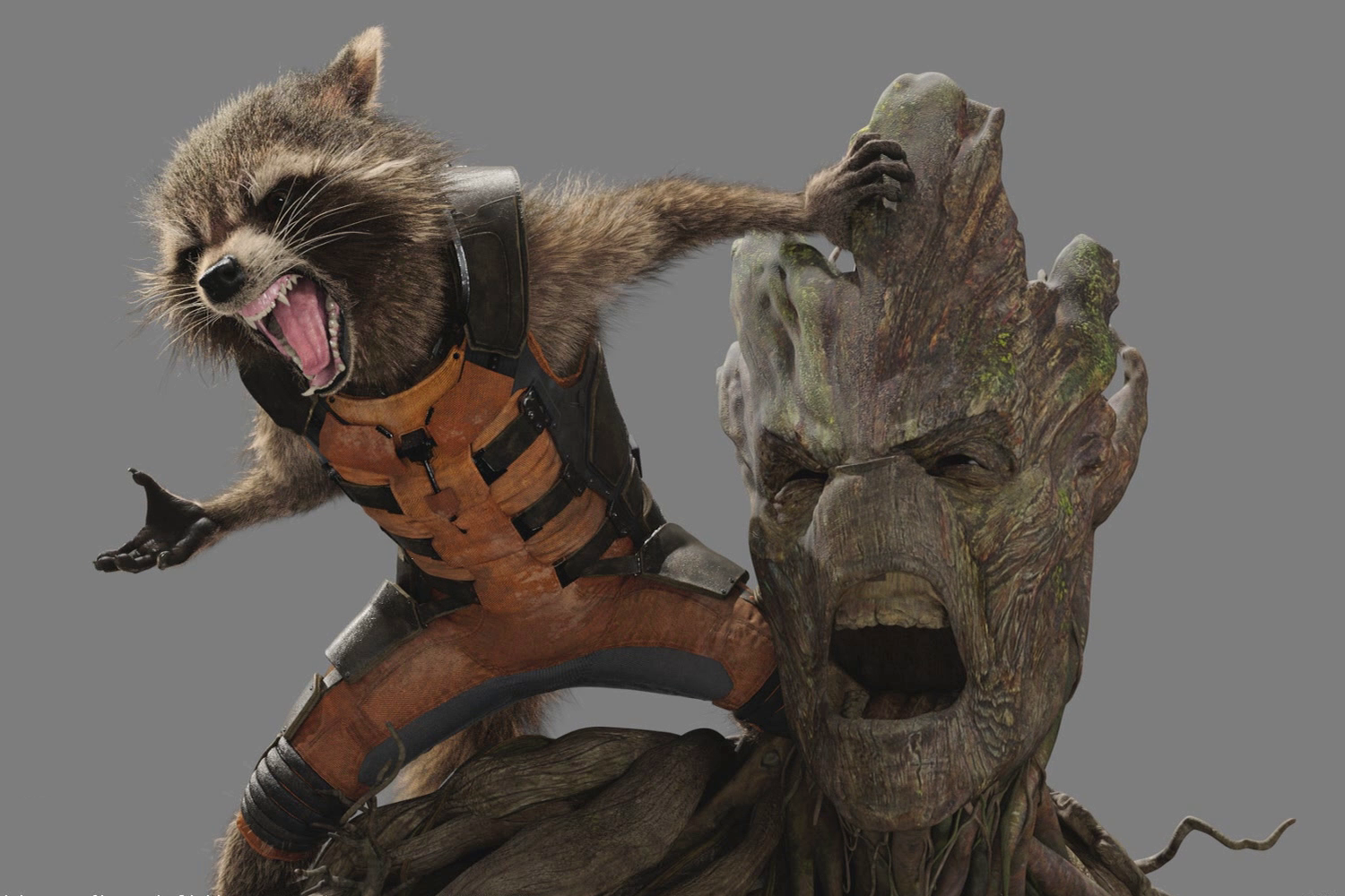 Rocket Raccoon Quote Marvel Cinematic Universe Wiki