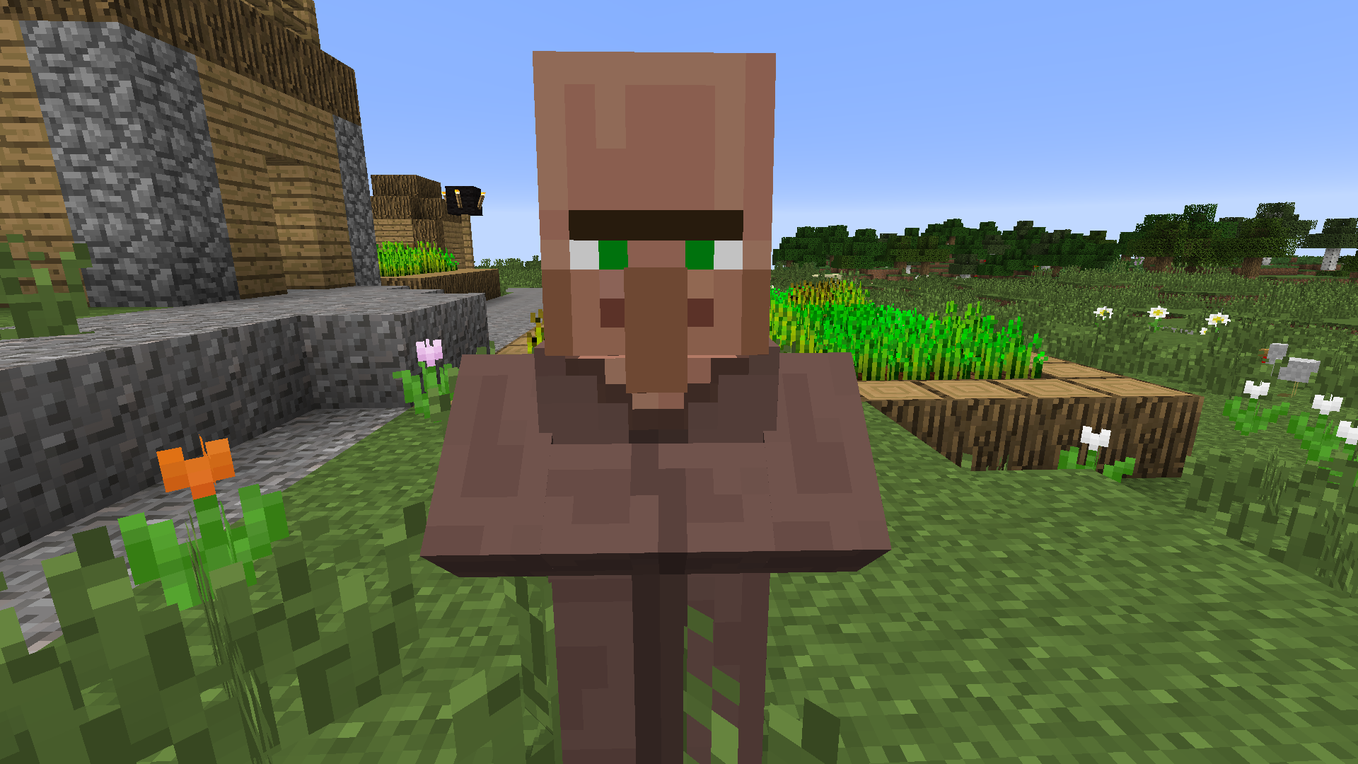 minecraft how to make villagers spawn