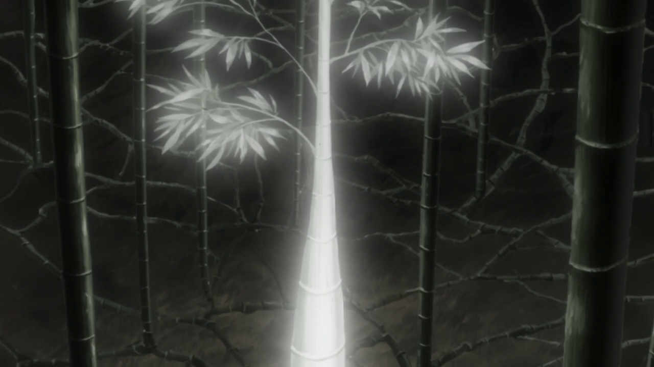 森森水族����9�����_蟲|[組圖+影片]的最新詳盡資料**(必看!!)-www.go2tutor.com