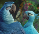 "Rio fan/New Rio 2 Clip ""Family Jewels"" Behind the Scenes"