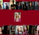 The Vampire Diaries Season 5 (Taylor Manton's)