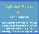 Agitated Puffer
