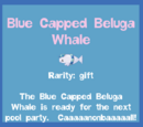 Blue Capped Beluga Whale