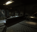 Waffenhändler (FC2)