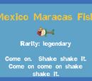 Mexico Maracas Fish