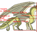 NikkiMcCloud/Exactly How Large Are Pyrrhia's Dragons?