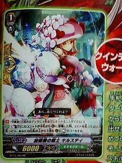 Monthly Bushiroad - May Issue NNQW