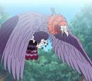 Bird Beast