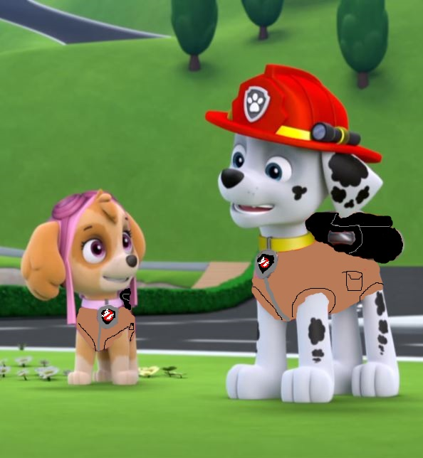 Chase and skye paw patrol dating