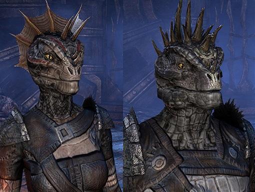 General InformationElder Scrolls Online Argonian Armor
