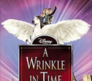 A Wrinkle in Time (film)
