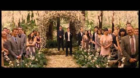 RiffTrax - Twilight Breaking Dawn pt 1 - Trailer!-0