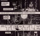 Turtle Dreams (Turtle Soup)