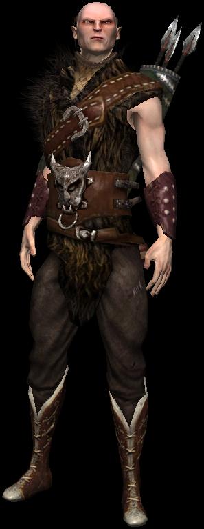 Elvish People Scoia'tael - Witcher W...