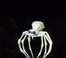 Gedanken kontrollierende Spinne