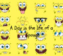 A Day in the Life of a Sponge (Bob SquarePants)
