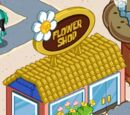 Images of the Flower Shop