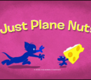 Just Plane Nuts