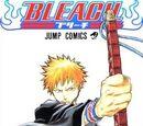 Bleach (Manga)