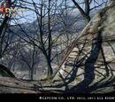 Bosque Marchito