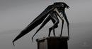 Concept Art - Godzilla 2014 - Winged MUTO 4.png