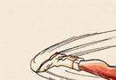 Chun-Li Spinning Bird Kick.png