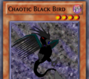 Chaotic Black Bird