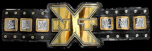 Cruiserweight Championship 500px-20140815_NXT